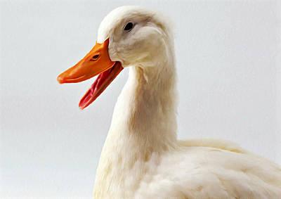 Pekin Ducks 1 Poster by Lanjee Chee