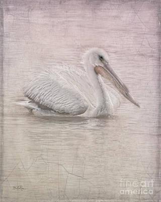 Pelican In Pastel Poster by Betty LaRue
