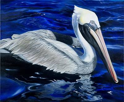 Pelican In The Keys Poster by Michael Alexander