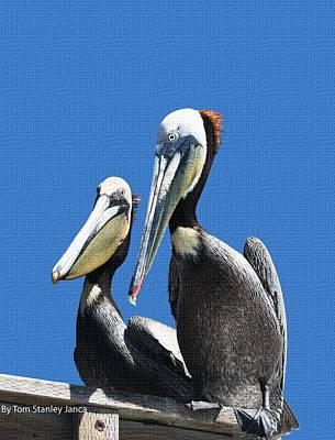 Pelican Pair Poster by Tom Janca