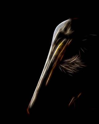 Pelican Portrait Digital Art Poster by Ernie Echols