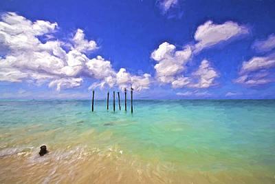 Pelicans Of Aruba Poster