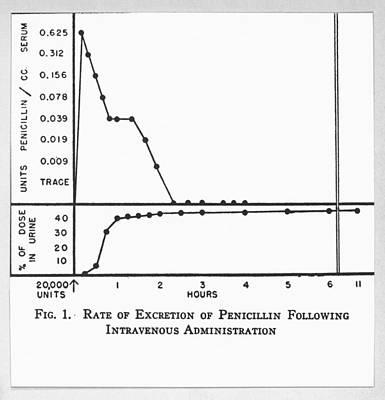 Penicillin Research, World War II Poster