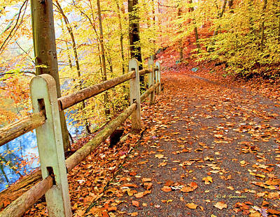 Pennypack Trail Philadelphia Fall Poster