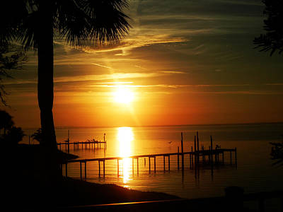 Pensacola Bay Sunrise Poster by Shelly Grobstig