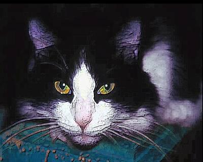 Pensive Cat Poster