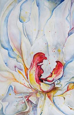 Peony Unfolding Poster by Kelly Johnson
