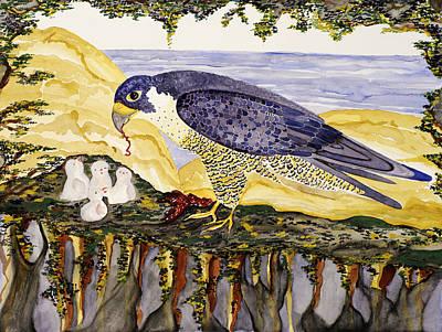 Peregrine Falcon Feeding Chicks Poster by Alexandra  Sanders