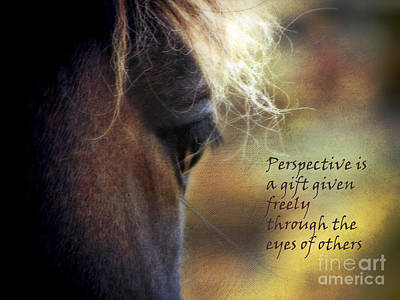 Perspective Is A Gift Poster