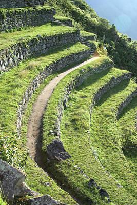 Peru, Machu Picchu Terracing Poster by John Ford