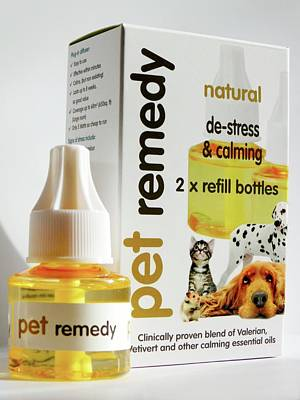 Pet Calming Herbal Remedy Poster by Ian Gowland
