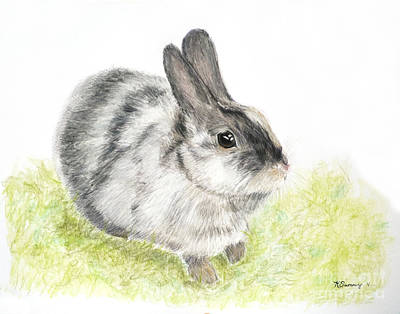 Pet Rabbit Gray Pastel Poster