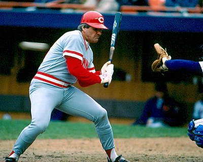 Pete Rose Taking Pitch Poster