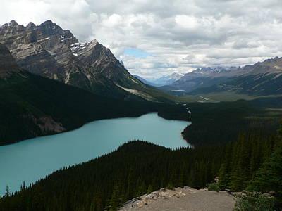 Peyote Lake In Banff Alberta Poster