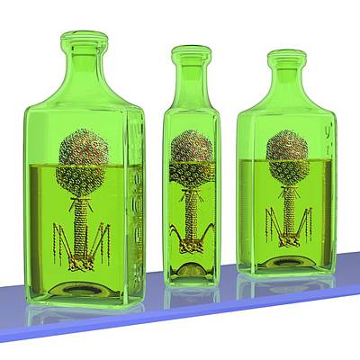 Phage Therapy Bottles Poster by Russell Kightley