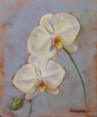 Poster featuring the painting Phalaenopsis Orchid by Margaret Stockdale
