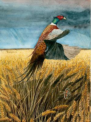 Pheasant Rising Poster