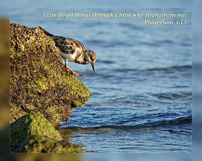 Philippians 4 13 Poster by Dawn Currie