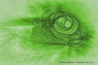 Photosynthesis Poster by Doug Morgan