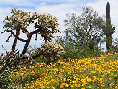 Picacho Peak Wild Flowers Poster