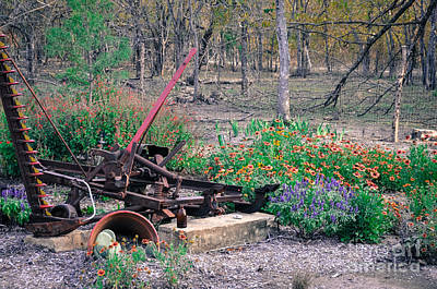 Pickle Creek Ranch Botanical Garden Poster