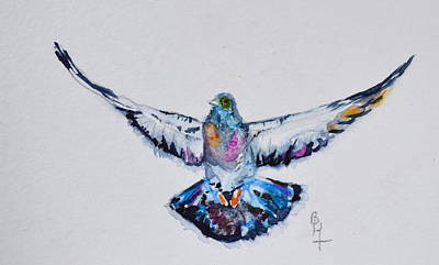 Pigeon In Flight Poster by Beverley Harper Tinsley