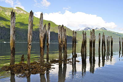 Poster featuring the photograph Pilings by Cathy Mahnke