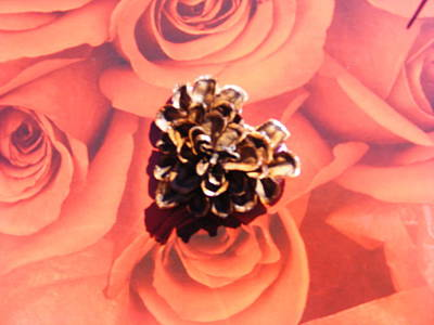 Pine Cone Heart Love Poster
