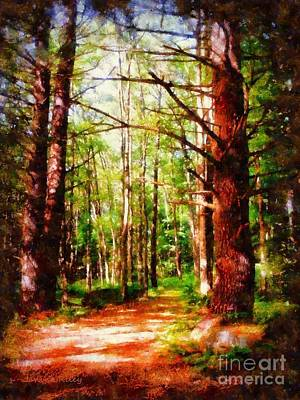 Pine Forest Path Poster by Janine Riley