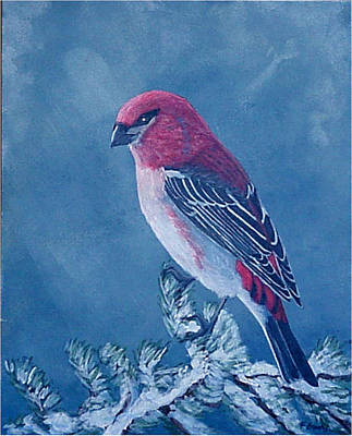 Poster featuring the painting Pine Grosbeak by Fran Brooks