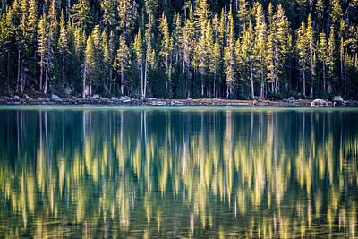 Pines Reflected In Tenaya Lake Poster