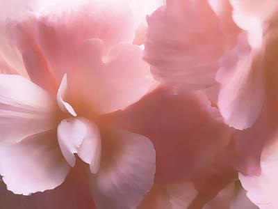 Pink Begonia Floral Poster