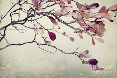 Pink Blueberry Leaves Poster by Priska Wettstein