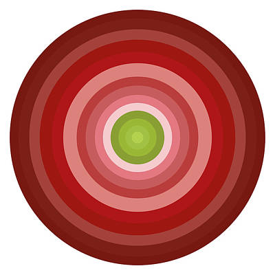 Pink Circles Poster by Frank Tschakert
