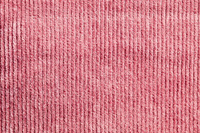 Pink Corduroy Poster by Tom Gowanlock