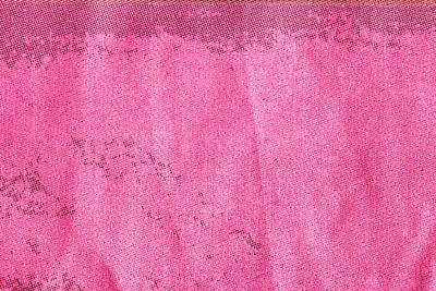 Pink Cotton  Poster by Tom Gowanlock