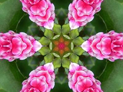 Pink Flower Star Mandala Poster