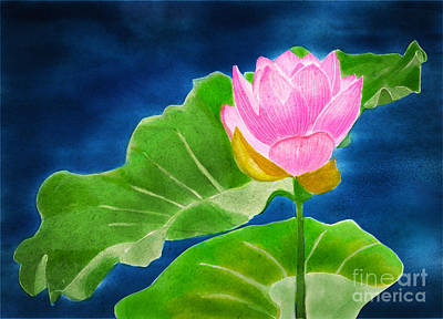 Pink Lotus  Poster by Joan A Hamilton
