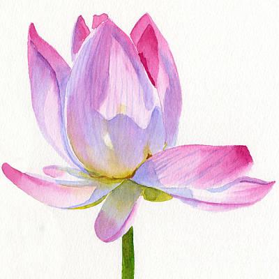 Pink Lotus Square Design Poster by Sharon Freeman