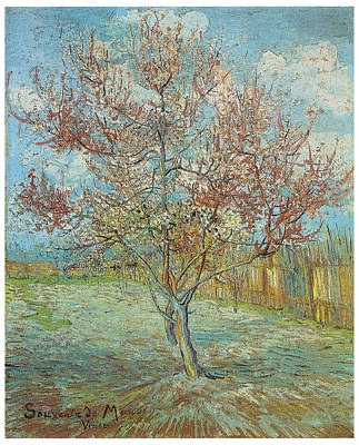 Pink Peach Tree In Blossom Poster by Vincent Van Gogh