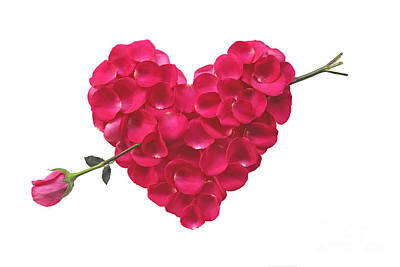 Pink Rose Heart Valentine Poster by Boon Mee