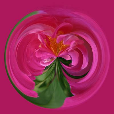 Pink Rose Series 112 Poster