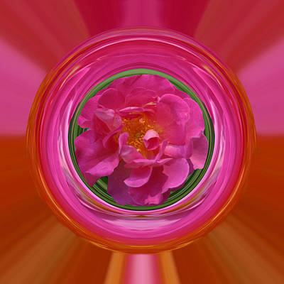 Pink Rose Series 113 Poster