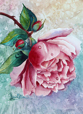 Pink Rose With Waterdrops Poster by Karen Mattson
