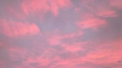 Pink Sky Poster by John Wartman