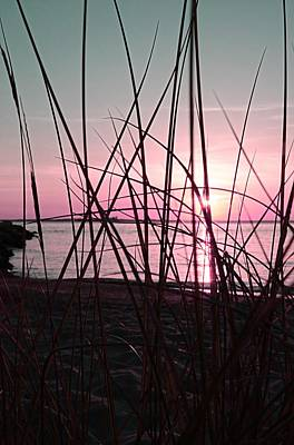 Pink Sunset Poster by Marianna Mills