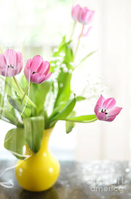 Pink Tulips In Yellow Vase Poster by Lois Bryan
