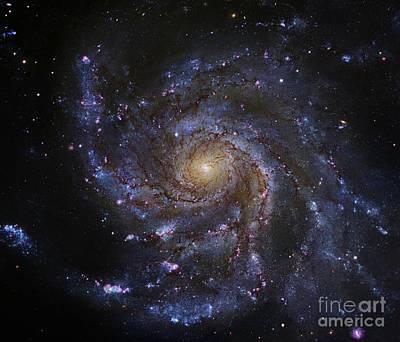 Pinwheel Galaxy (m101), Hubble Image Poster