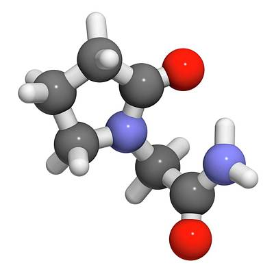 Piracetam Nootropic Drug Molecule Poster