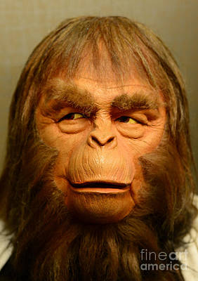Planet Of The Apes - Dr. Zaius Poster
